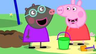 Peppa Pig Francais Noel Avec Peppa Dessin Anime Pour Bebe Video Kids Des Dessins Animes Adaptes Aux Enfants